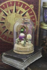 Petit Globe à coléoptère Carabe