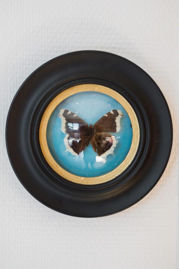 Cadre sorcière papillon Rouen